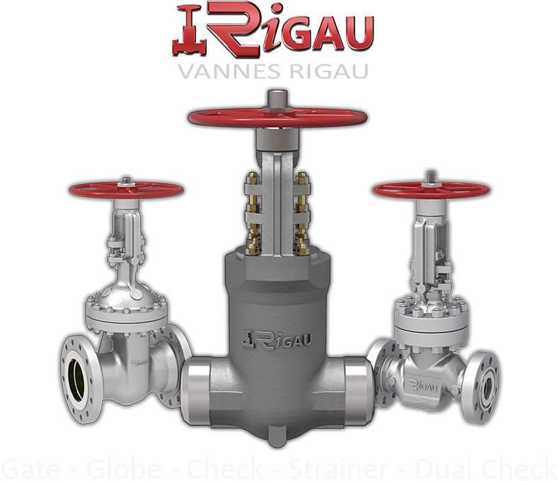 gate globe & check valve home page